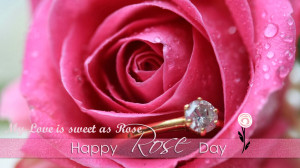Rose Day 2014 Wallpapers,Quotes and Greetings card