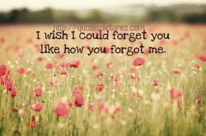 wish I could forget you like how you forgot me