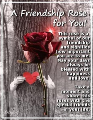 Rose For My Friend, A Friendship Rose for You