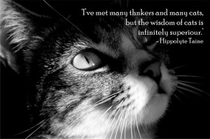 ... cats but the wisdom of cats is infinitely superior hippolyte taine