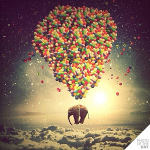 ballons, balloons, clouds, colors, dreams, elephant, fantasy, fly away ...
