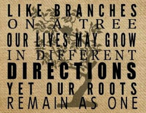 African American Family Reunion Tree Family reunion quote