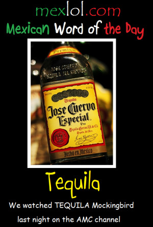 Mexican Word of the Day: Tequila