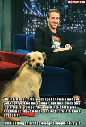 ryan gosling and his dog, funny quotes