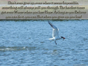 ... posted in quotes and tagged motivational quotes motivational thoughts