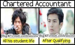 Chartered Accountant Life