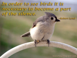 ... Birds It Is Necessary To Become A Part Of The Silence - Birds Quote