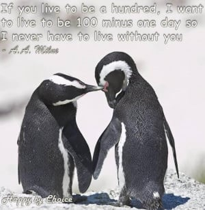 Go Back > Gallery For > Penguin Love Quotes
