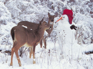 Download Snowmen wallpaper, 'snowman with deers'.