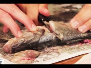How to Gut and Deep Fry a Fish (starring Skippy)