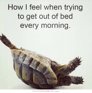 ... Quotes Tired Quotes Funny Morning Quotes Laziness Quotes Bed Quotes