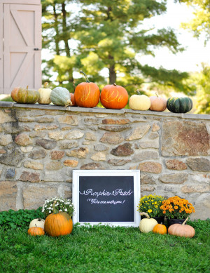 Pumpkin Details | Autumn Wedding Inspiration