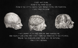 Quotes Brain 1920×1200 Wallpaper 875197