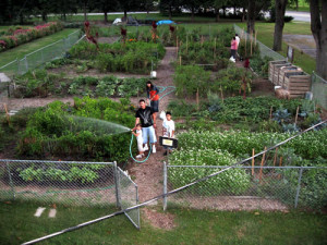 of the Brethren Community Garden has been growing food and community ...