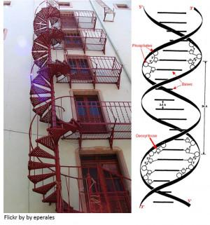 GATTACA QUOTES DNA