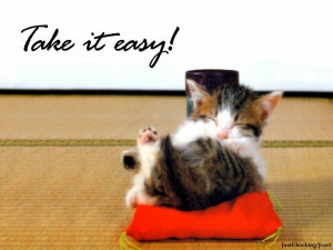 Funny Pictures With Sayings – Funny Cat Sayings