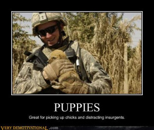 Top 10 Funny Demotivational Posters Feauring Animals, funny ...