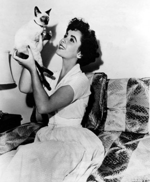 ... pets lives on through a facet of The Elizabeth Taylor AIDS Foundation