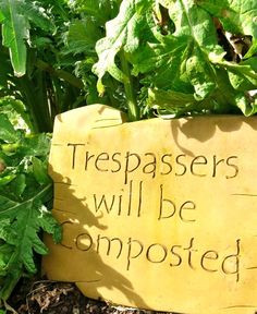 Posts related to Garden Quotes And Sayings
