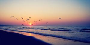 Facebook Cover Photos Beach Quotes 100 best facebook cover photos