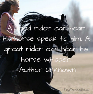 Inspirational Quotes About Horses