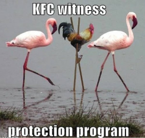 Funny KFC Kentucky Fried Chicken Witness Protection Program Picture ...