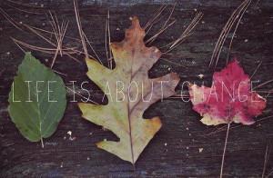 life quotes change autumn beautiful