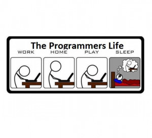 Programmers Life !