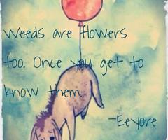 eeyore quotes
