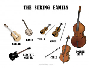 The String Family- The Bird Feed