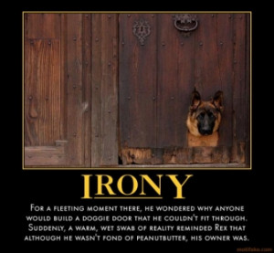 Irony Demotivational Poster