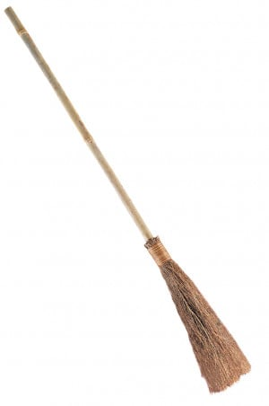 Witch Broom