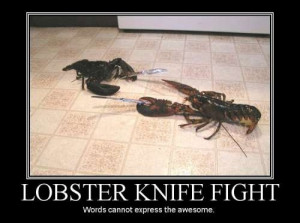Lobster fighter – funny war