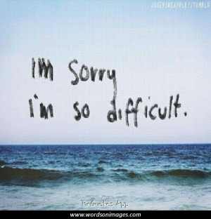sorry my love quotes
