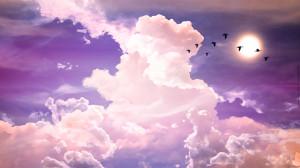 Wallpaper: Lavender 1920x1080