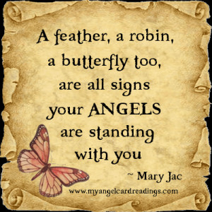 feather, a robin, a butterfly too, are all signs your Angels are ...