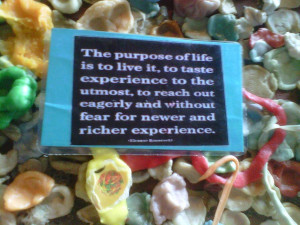 Gum Wall Quotes Photograph