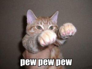 Funny+Cats+Fighting+(22).jpg