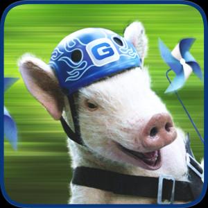 geico piggy s pin wheeels geico