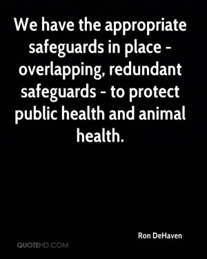 We have the appropriate safeguards in place - overlapping, redundant ...