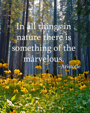 ... -nature-there-is-something-of-the-marvelous-aristotle-camping-quotes