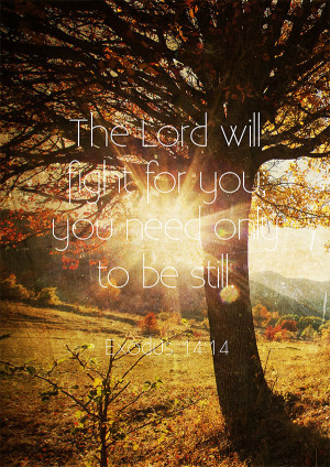 Exodus 14:14 - The Lord will fight for you; You need only to be still.