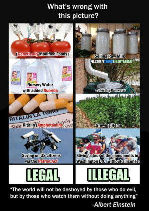 Legal vs illegal grow food not lawns