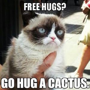 10 New Grumpy Cat Memes