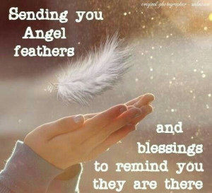 ... Angels Feathers, Angels Ripped, Angels Among, Awesome Quotes, J Angels
