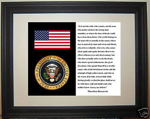President-1901-1909-Theodore-Roosevelt-Quote-American-Flag-Seal-Framed ...