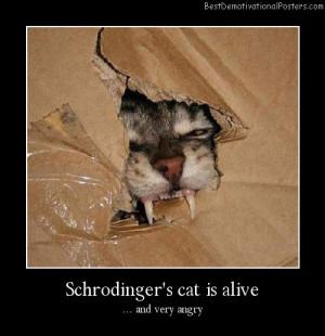 Schrodinger's-cat-is-alive Best Demotivational Posters