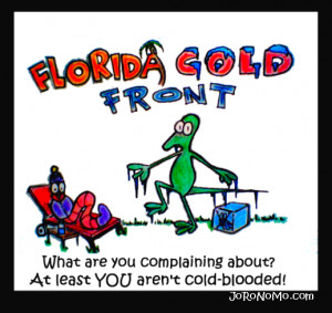 Florida Cold Weather Jokes