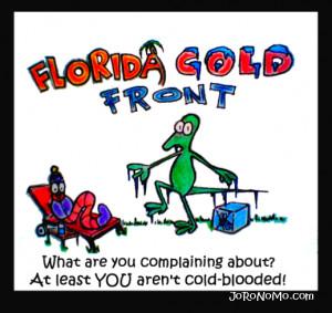 Florida Weather Quotes. QuotesGram
