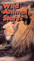 Wild Animal Stars